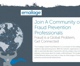 Risk Assessment Fraud Prevention Solution Startup Emailage Corp